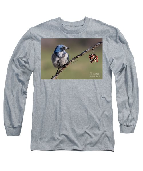 Florida Scrub Jay Long Sleeve T-Shirt