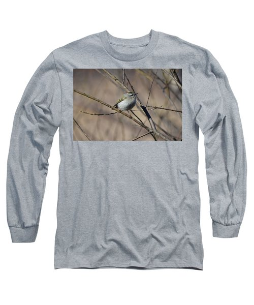 Golden-crowned Kinglet Long Sleeve T-Shirt by James Petersen