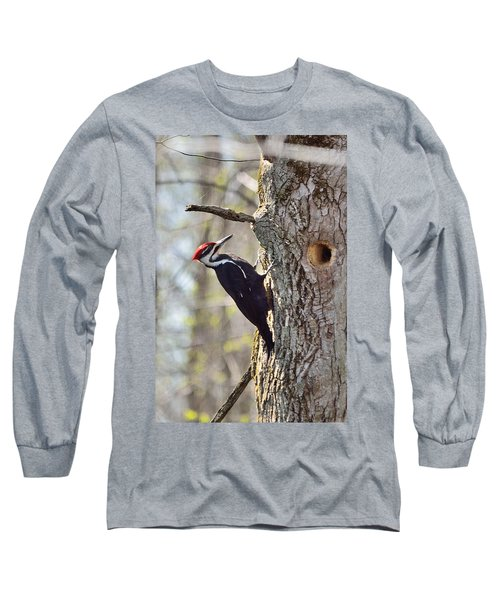Male Pileated Woodpecker Long Sleeve T-Shirt by David Porteus