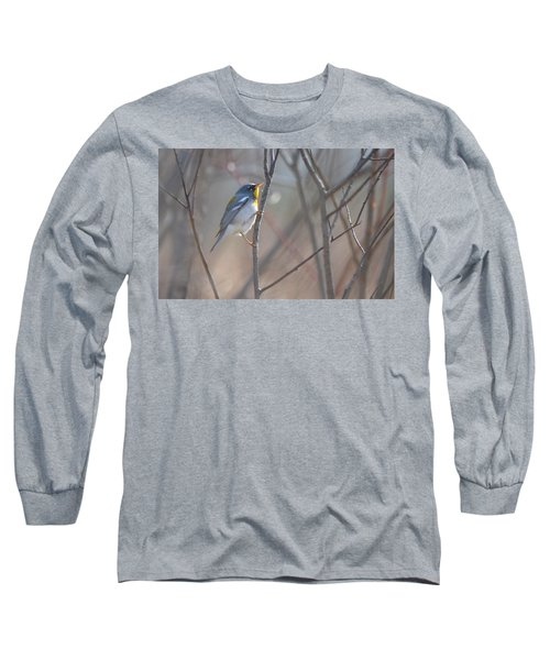 Northern Parula Long Sleeve T-Shirt by James Petersen