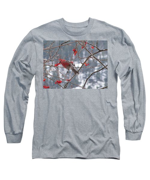 Pine Grosbeak And Mountain Ash Long Sleeve T-Shirt by Leone Lund
