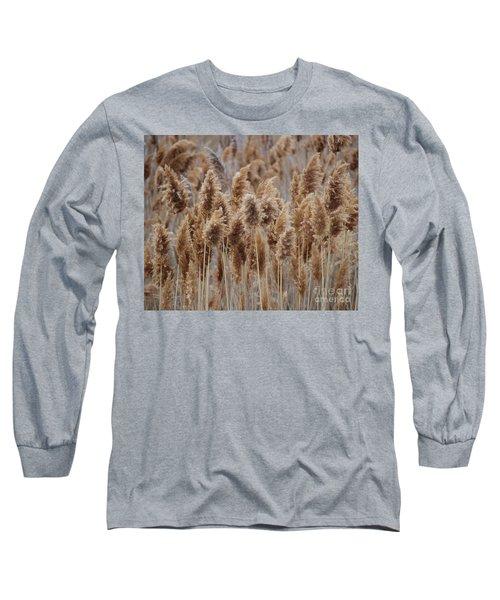 Wind Blown Redish Brown Plants Long Sleeve T-Shirt