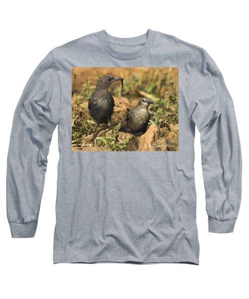 Starling Estornino Long Sleeve T-Shirt by Guido Montanes Castillo
