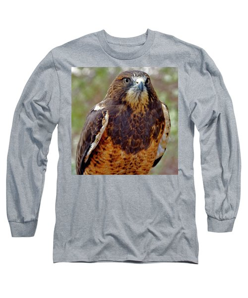 Swainson's Hawk Long Sleeve T-Shirt
