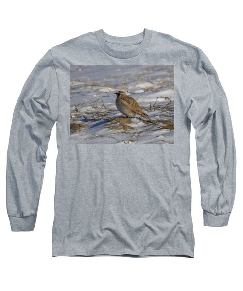 Winter Bird Long Sleeve T-Shirt by Jeff Swan