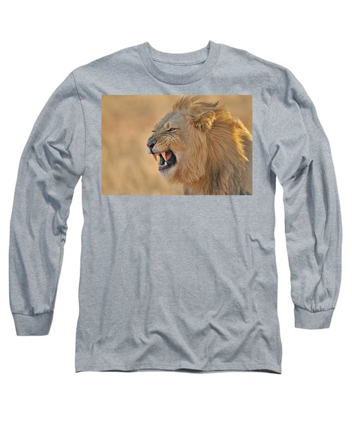 120118p081 Long Sleeve T-Shirt