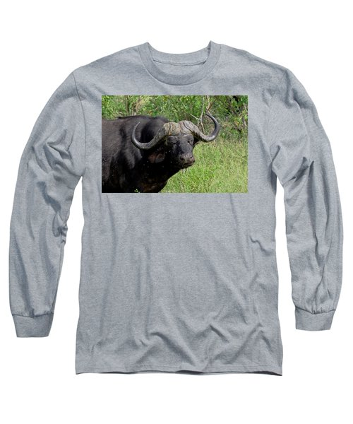 Cape Buffalo Long Sleeve T-Shirt by Tony Murtagh