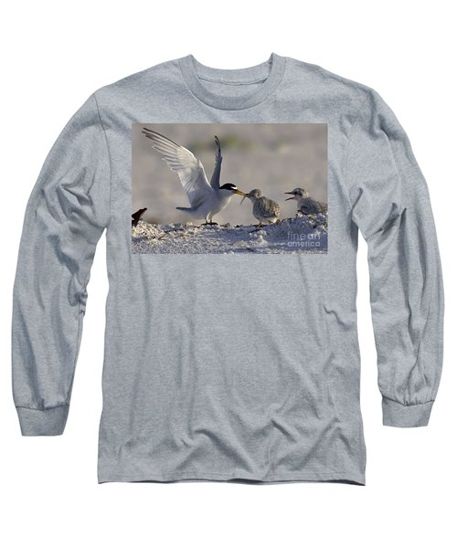 Least Tern Feeding It's Young Long Sleeve T-Shirt