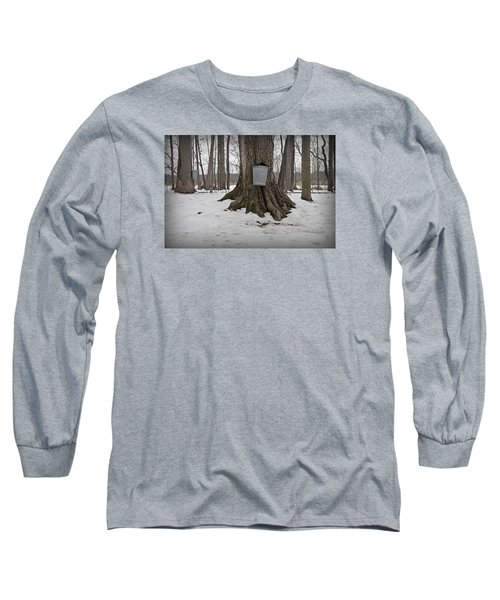 Maple Sugaring Long Sleeve T-Shirt by John Stephens