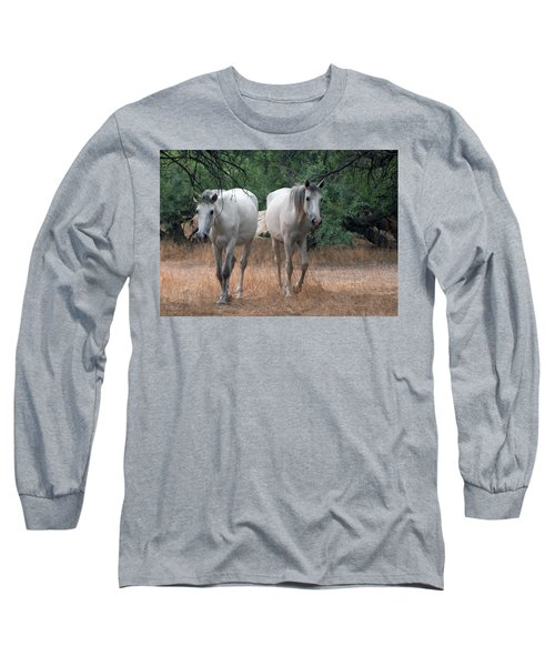 Salt River Wild Horse Long Sleeve T-Shirt