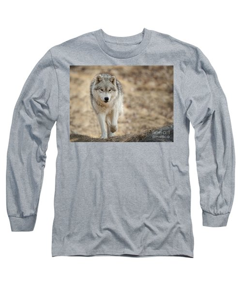 Long Sleeve T-Shirt featuring the photograph Arctic Wolf by Wolves Only