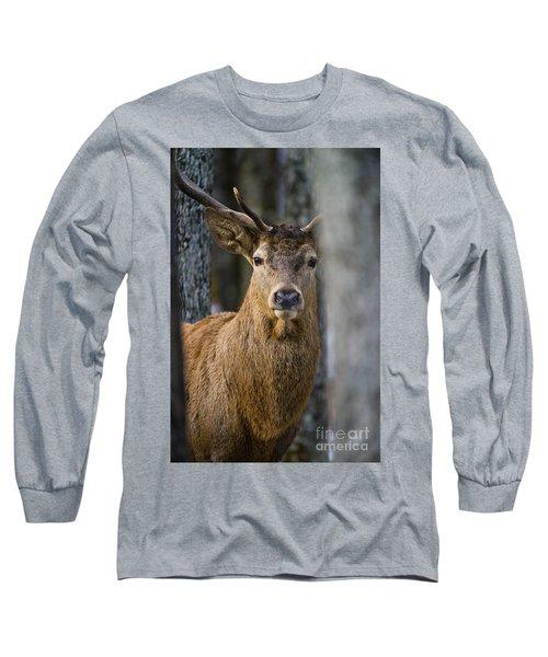 Bull Elk  Long Sleeve T-Shirt
