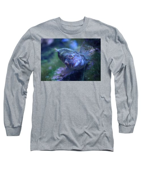 Long Sleeve T-Shirt featuring the photograph Redspotted Hawkfish  by Savannah Gibbs