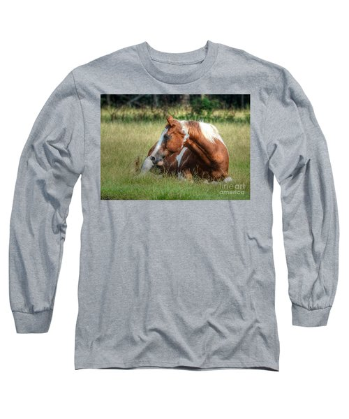A Comfy Resting Place Long Sleeve T-Shirt