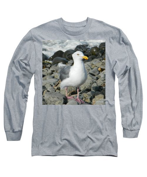 Long Sleeve T-Shirt featuring the photograph A Curious Seagull by Chalet Roome-Rigdon