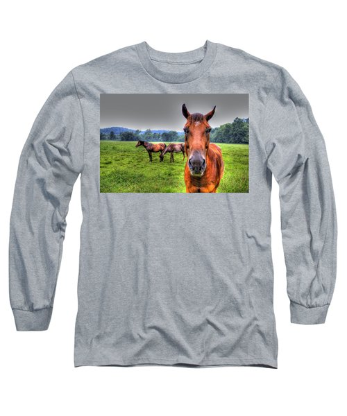 Long Sleeve T-Shirt featuring the photograph A Starring Horse by Jonny D