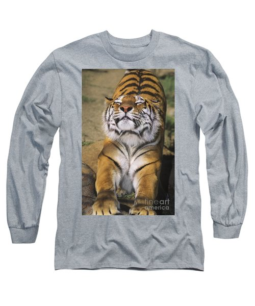 A Tough Day Siberian Tiger Endangered Species Wildlife Rescue Long Sleeve T-Shirt