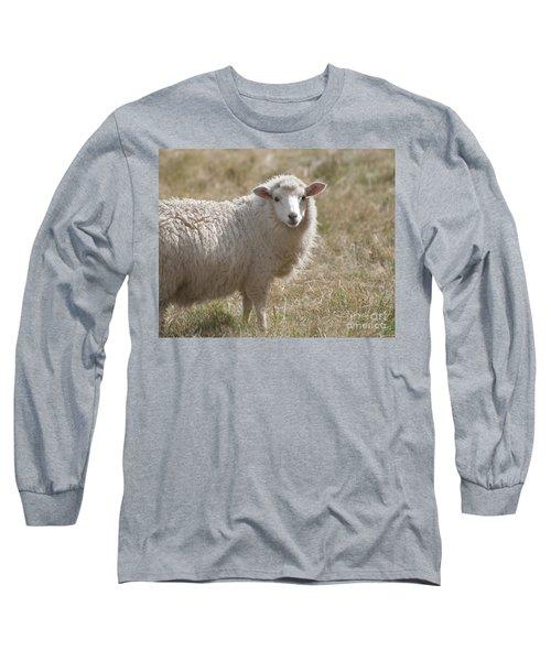 Adorable Sheep Long Sleeve T-Shirt by Loriannah Hespe