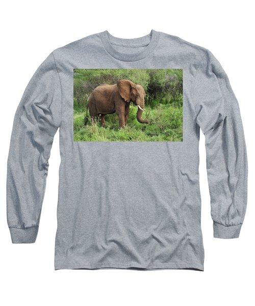 African Elephant Grazing Serengeti Long Sleeve T-Shirt