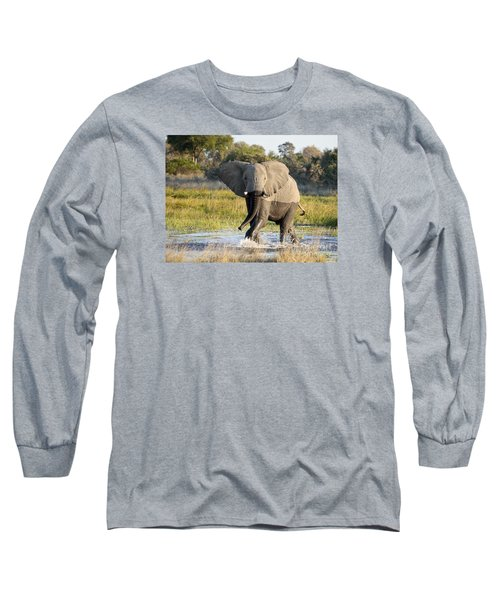 Long Sleeve T-Shirt featuring the photograph African Elephant Mock-charging by Liz Leyden
