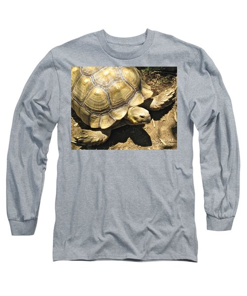 African Spurred Tortoise Long Sleeve T-Shirt by CML Brown