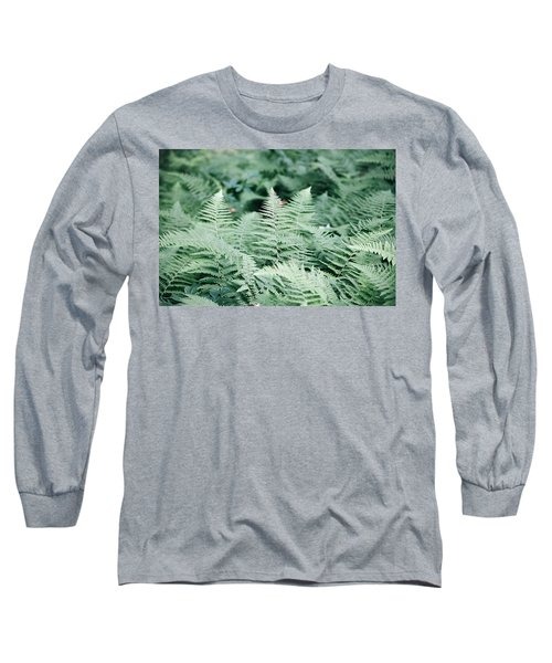 Long Sleeve T-Shirt featuring the photograph Algonquin Ferns by David Porteus