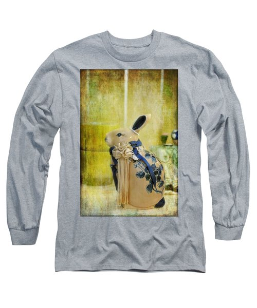 Long Sleeve T-Shirt featuring the photograph All Dressed Up by Jan Amiss Photography