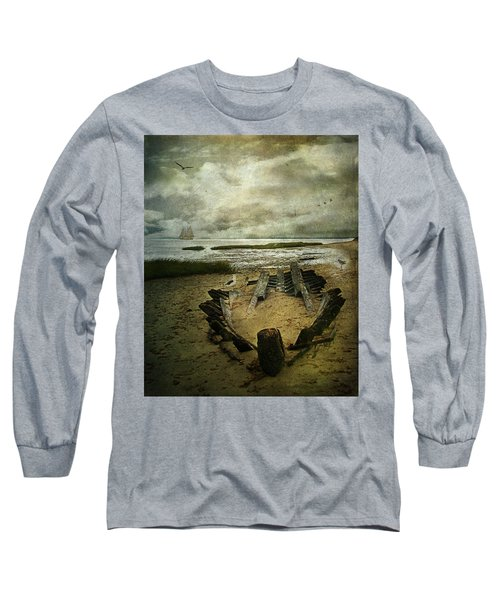 All That Remains Long Sleeve T-Shirt by Lianne Schneider