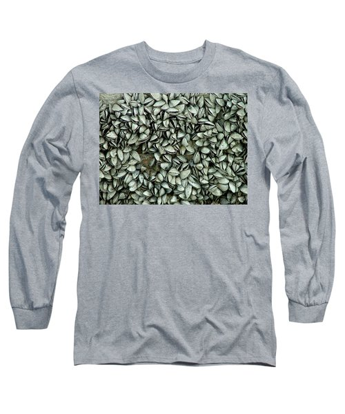 All The Shells Long Sleeve T-Shirt