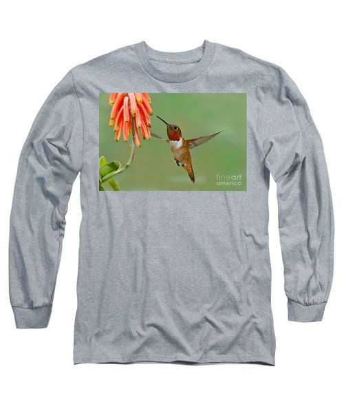 Allens Hummingbird At Flowers Long Sleeve T-Shirt