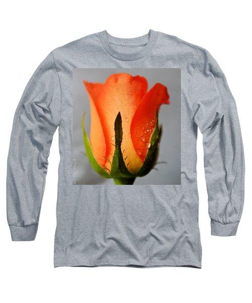 Allure Long Sleeve T-Shirt by Felicia Tica