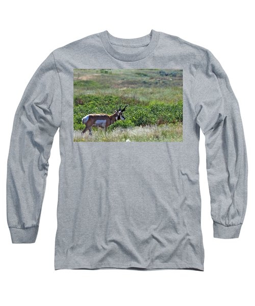 Long Sleeve T-Shirt featuring the photograph American Pronghorn Buck by Karon Melillo DeVega