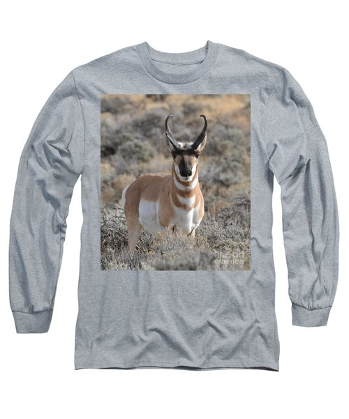 ...and The Antelope Play Long Sleeve T-Shirt