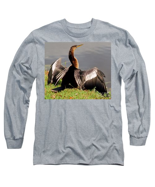 Anhinga Anhinga Anhinga Drying Plumage Long Sleeve T-Shirt