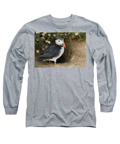Atlantic Puffin At Burrow Skomer Island Long Sleeve T-Shirt by Sebastian Kennerknecht