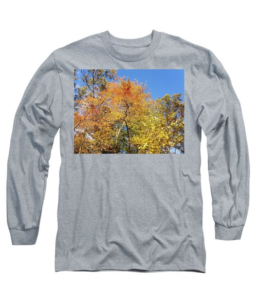 Long Sleeve T-Shirt featuring the photograph Autumn Limbs by Jason Williamson