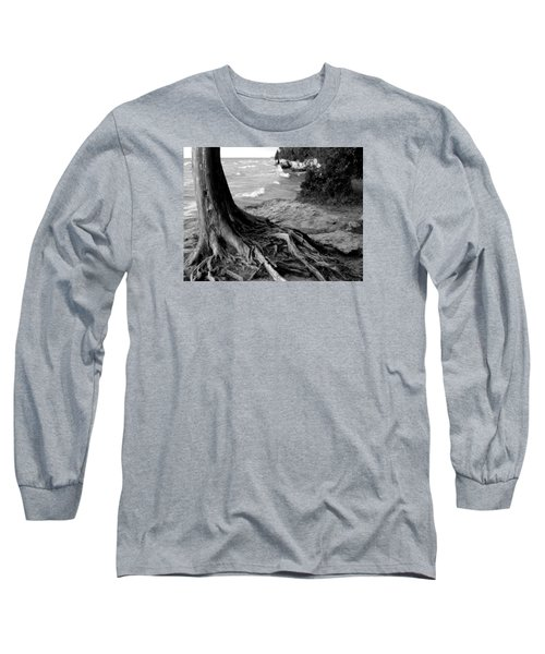 B And W Cedar Roots At Cave Point Long Sleeve T-Shirt by David T Wilkinson