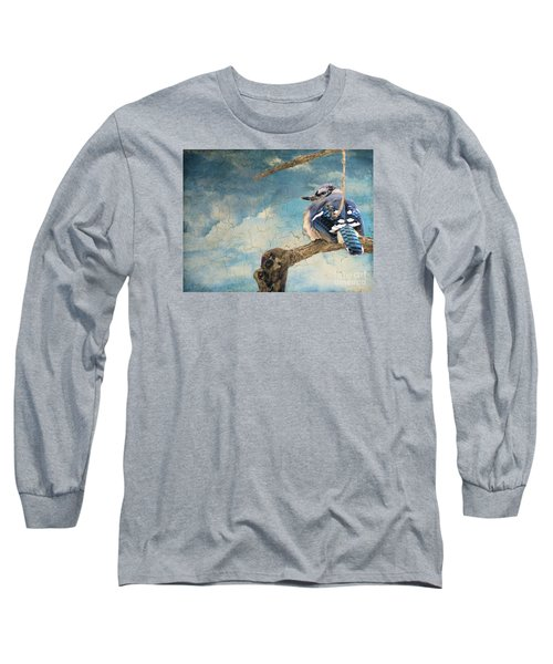 Baby Blue Jay In Winter Long Sleeve T-Shirt by Janette Boyd
