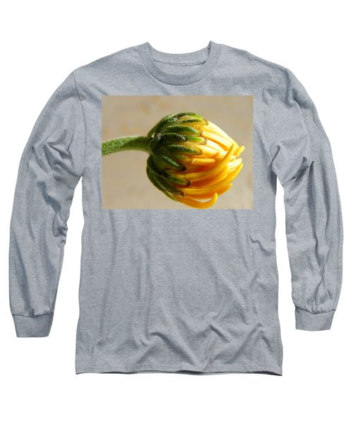 Long Sleeve T-Shirt featuring the photograph Baby Spider Mum by Deb Halloran
