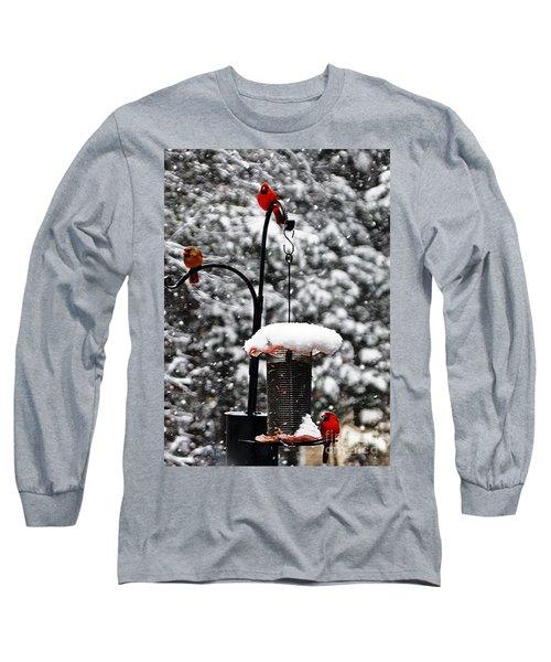 Backyard Winter Wonderland 2  Long Sleeve T-Shirt