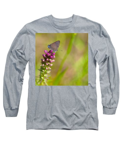 Banded Hairstreak Butterfly Long Sleeve T-Shirt