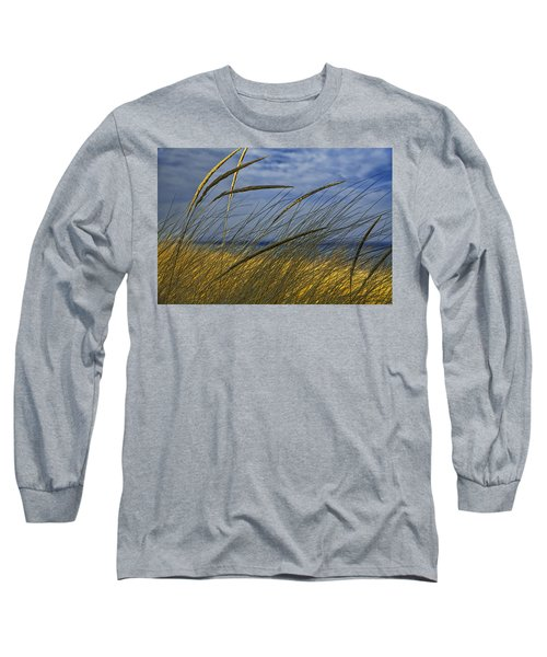 Beach Grass On A Sand Dune At Glen Arbor Michigan Long Sleeve T-Shirt