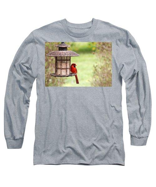 Long Sleeve T-Shirt featuring the photograph Beautiful Cardinal by Trina  Ansel