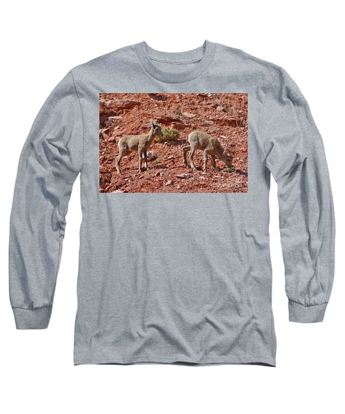 Long Sleeve T-Shirt featuring the photograph Bighorn Canyon Sheep Wyoming by Janice Rae Pariza