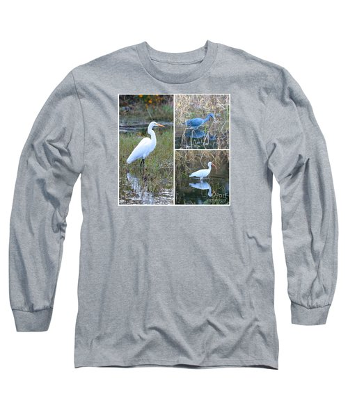 Birds On Pond Collage Long Sleeve T-Shirt by Carol Groenen