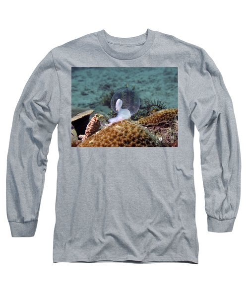 Long Sleeve T-Shirt featuring the photograph Birth Of Marine Cuttlefish by Sergey Lukashin