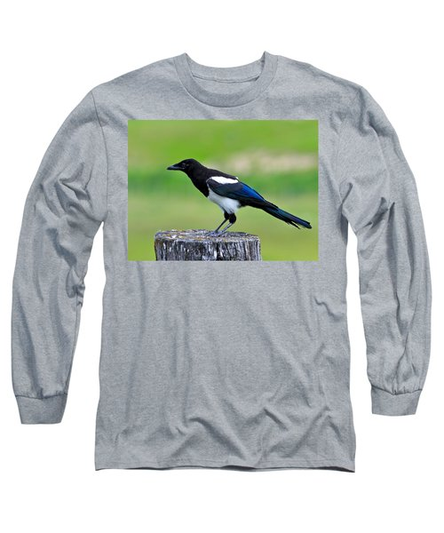 Black Billed Magpie Long Sleeve T-Shirt