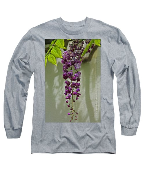 Black Dragon Wisteria Long Sleeve T-Shirt
