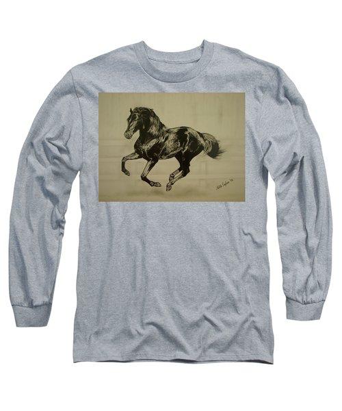 Black Stallion Long Sleeve T-Shirt by Melita Safran