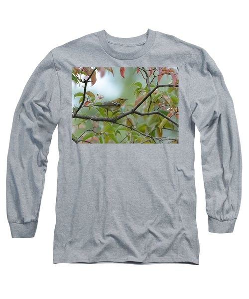 Blackpoll Warbler In The Fall Long Sleeve T-Shirt